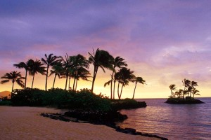 Oahu Wedding Package