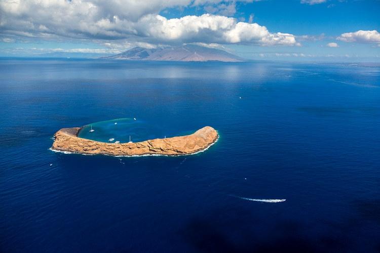 Discover Molokini Cruise